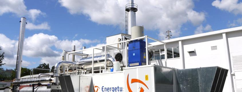 Somelos Cogeneration Plant. Energetus