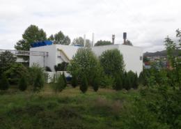 Riopele Cogeneration Plant. Energetus